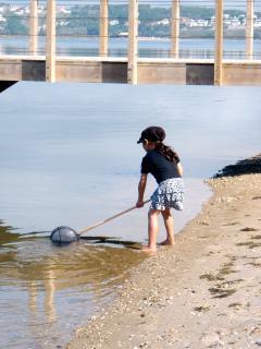 Fishing at Obidos Lagoon