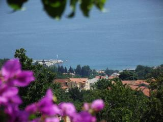 Apartment Babiloni with a stuning view, close to Opatija