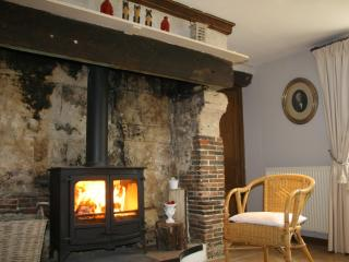 Living-room with stove