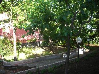 NICOLOSI  parco etna, Nicolosi