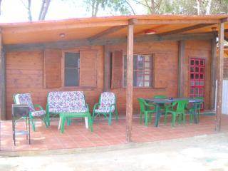 villa stile chalet con pineta