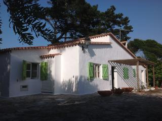 Holiday cottage, Lagoa de Obidos, beach, golf