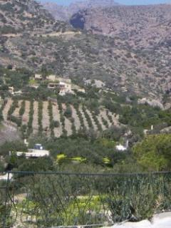 Views from all the balconies of the traditional Crete countryside