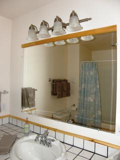 Lower level bath.....