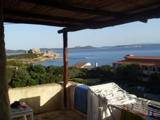 Costa Smeralda - Baia Sardinia - Cormorani bis