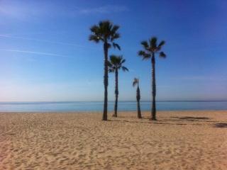 Apartamento a 50 mt de la playa, cómodo., Calafell