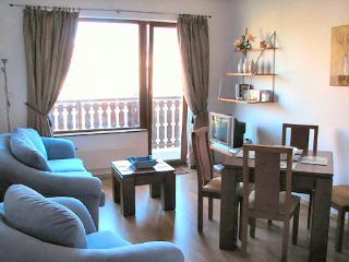 Fabulous homely apartment - you'll love it!, Bansko