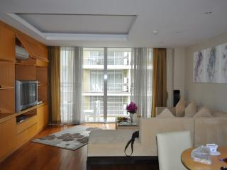 Chiang Mai 1 Bed Luxury Condo - Twin Peaks - City