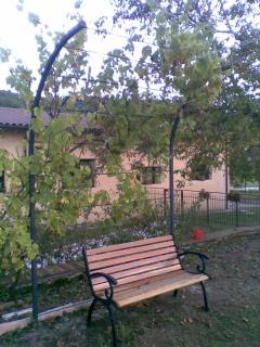 particolare giardino frutteto