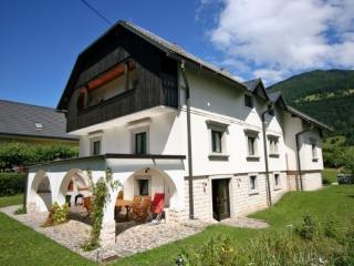 Vila Oniks Mojstrana  self-catering