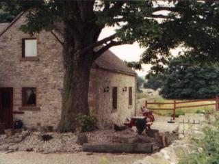 The Dairy at Cotterill Farm, Hartington