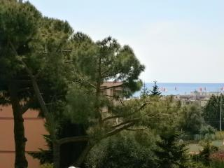 30 sqm, big sea view terrace, 7 mn walk from beach, Villeneuve-Loubet