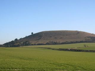Ivinghoe Beacon, seen from the farm