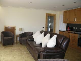 Open plan kitchen/living area.