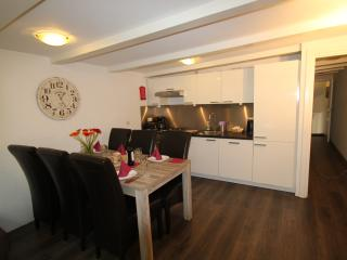 3 bedroom Apt with large terrace in central Amsterdam, Cocos Outback Apartment 2