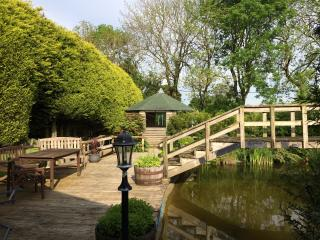 The decking area, summerhouse and pond