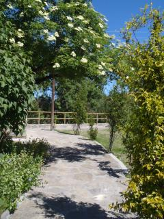 Acceso al jardin trasero y zona de aparcamiento