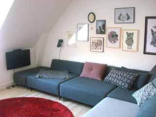 Cosy creative Copenhagen city  apartment at Amager, Copenhague