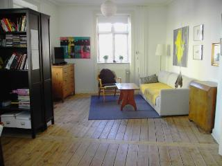 Cozy family friendly Copenhagen apartment at Noerrebro, Copenhague