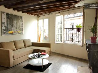 Grand studio + Terrasse, Paris centre