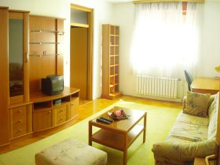 Zagreb one double bedroom apartment, free wifi