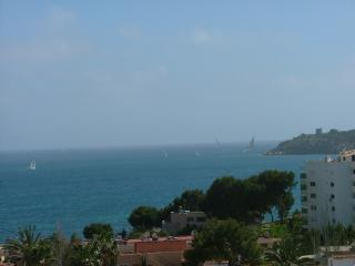 Sea views, 120m2 terrace, air con, double glazing