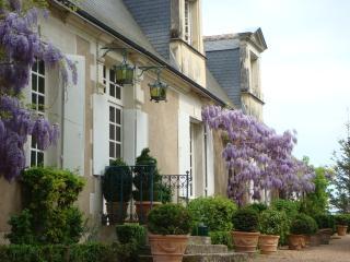 Demeure du XVIII Loire Valley, Monts