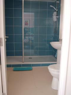 Walk in shower off bedroom 1