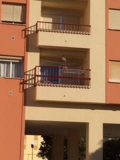 Terracita