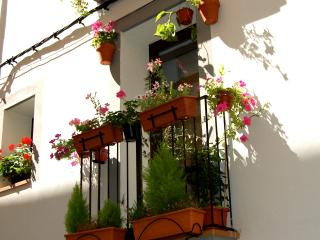 Apartment in the heart of Tremp, Catalonia