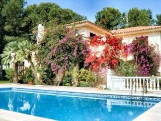 AME50, chalet piscina privada 10/12pers