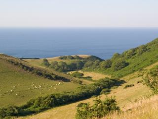 You can walk to the spectacular National Trust coast down an exquisite, almost private valley.