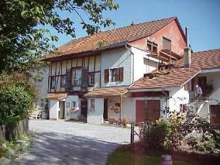Chambre d'hôtes à 12km de Zürich : NoSmokeNearZurich, Maur