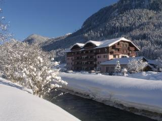 Cosy & comfortable apartment in 4* Hotel Complex, Gosau