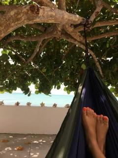 Enjoy our Hammock under the sea grape tree.