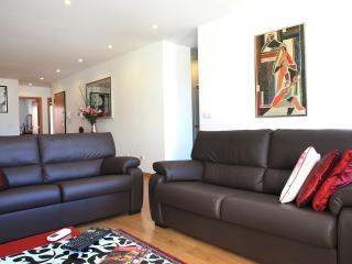 Living room with two leather sofas