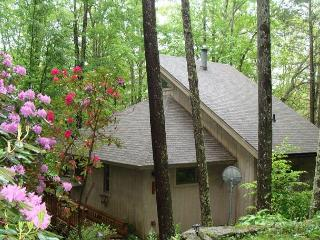 A Birds View a vacation in the trees awaits you in this 4 bedroom home., Banner Elk