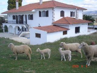 Casa São Bernardo cerca Playa Nazaré y S. M. Porto