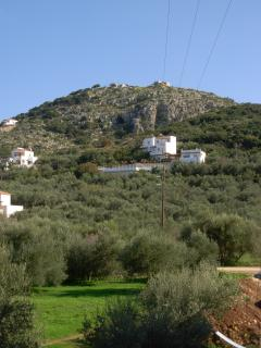 The upstairs view to olive groves and Plaka Hill
