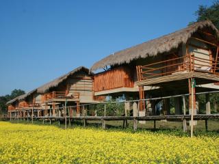 Diphlu River Lodge, Kaziranga National Park
