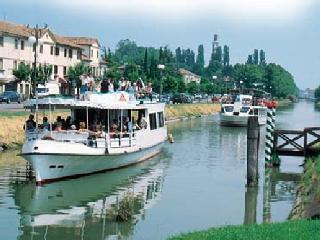 Venice Golden Lyon