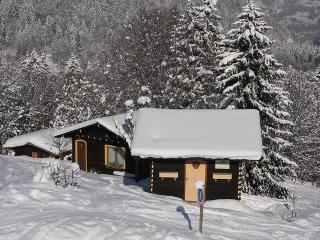 Mountain Cabin - Mazot Jaune - ski in ski out, Les Houches