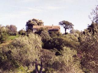 Chambre d'hotes&Guesthouse Stazzu La Capretta N°1, Olbia