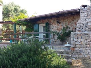 Villa Minteco