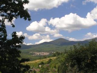 Organic Tuscan farm in breathtaking landscape, Selva di Santa Fiora
