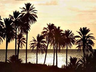 Apartment  200m = beach/ WiFi (*) guardamar, Guardamar del Segura