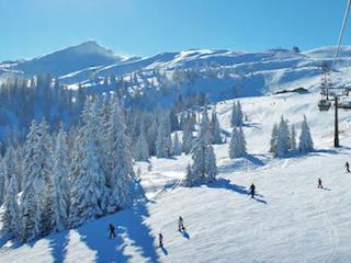 Flachau Ski & Summer