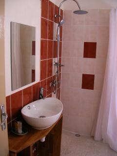 Large family bathroom, adapted for wheelchair users