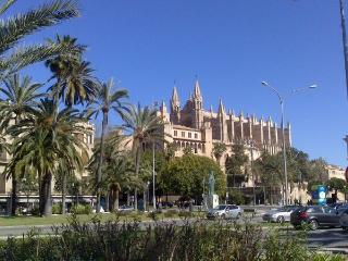 Can Blau-5. Palma Old town. Swimming pool. Parking