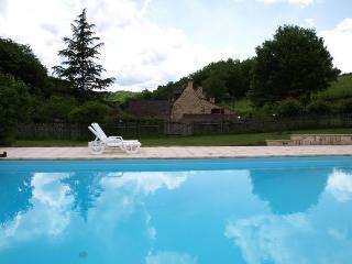 la piscine ( 12m*6m) traitée au sel sans produits chimiques et rien que pour vous !
